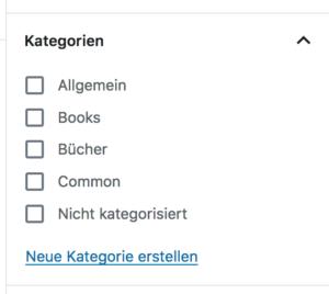 Screenshot - Kategorie erstellen auf Beitragsseite