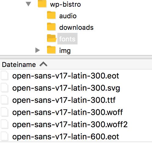 Screenshot aus Filezilla für die Datei-Struktur im Schriftenordner